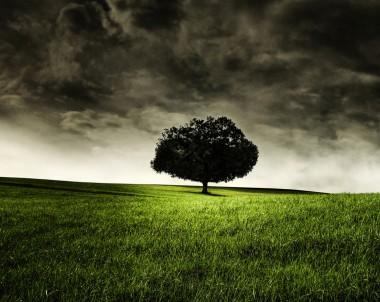 Intendance et spiritualité