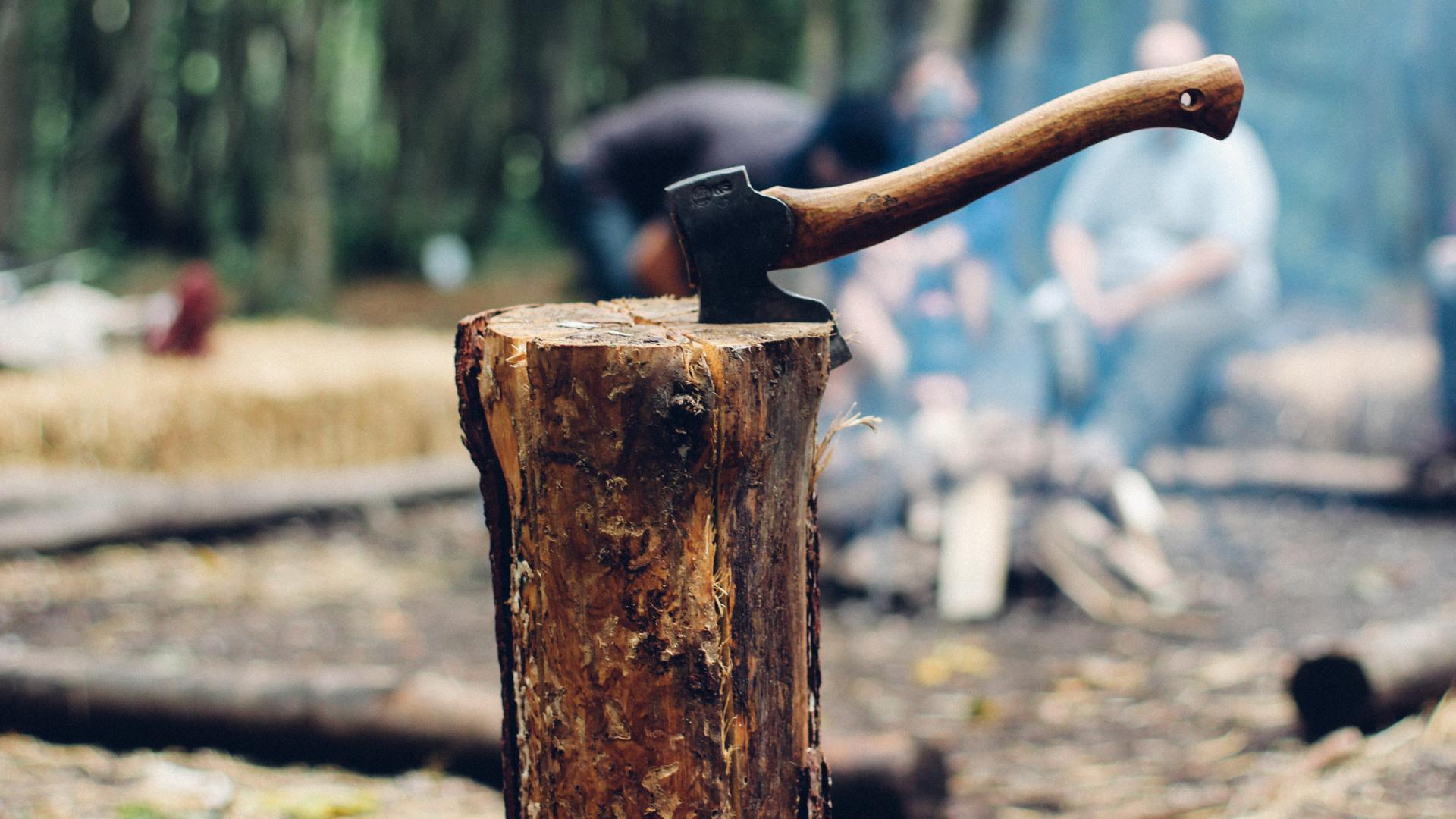 Comment tuer un arbre