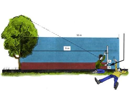 Mesurer un arbre avec la méthode au sol