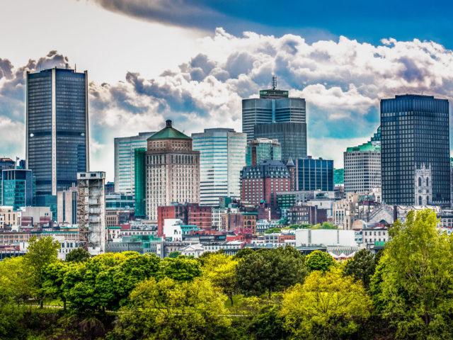 Les pandémies et la polyarboriculture à Montréal
